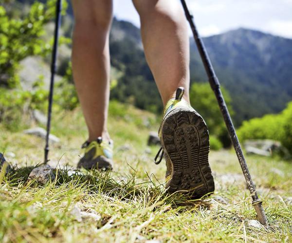 Guía de Senderismo Interpretado. Actividad Saludable en la Naturaleza